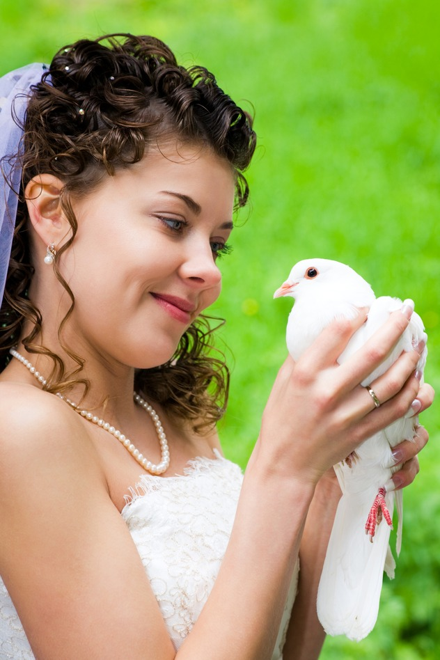 A Beautiful Bride with White Dove