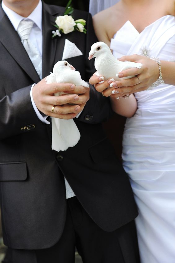 Newlyweds Holding White Doves in Their Hands