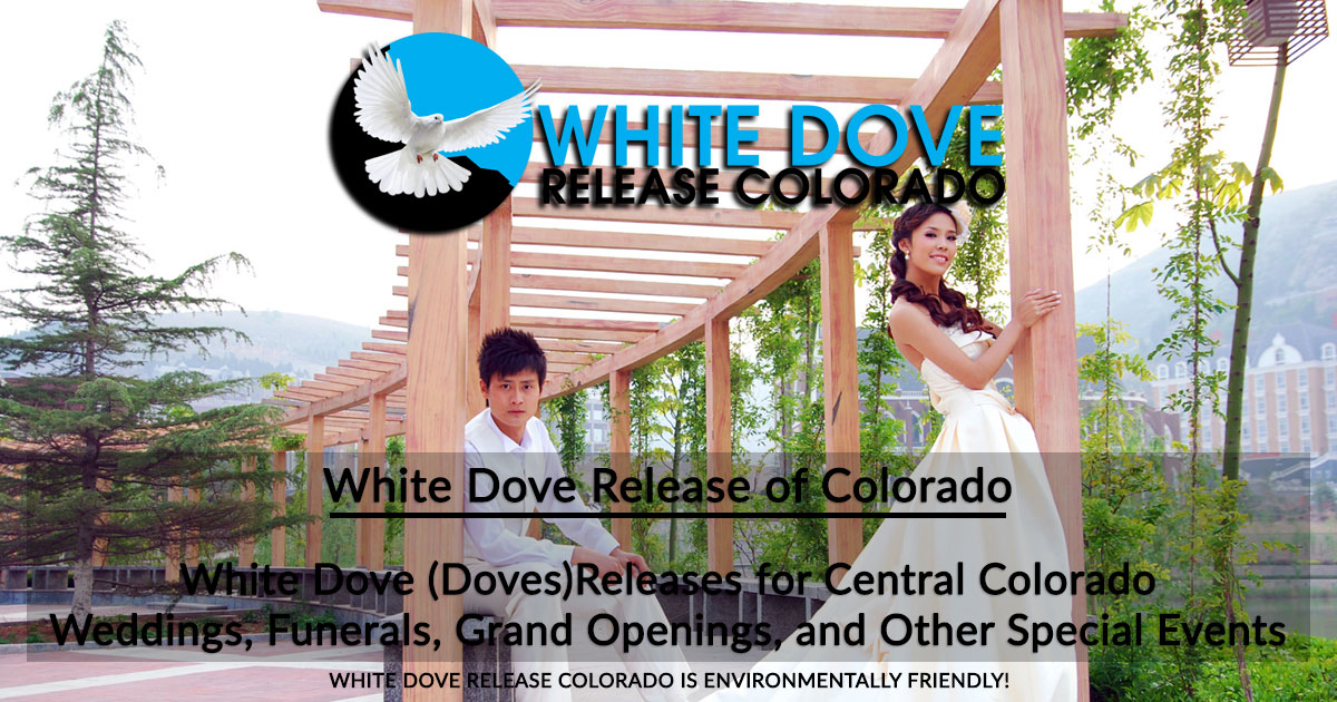 White Dove Release Colorado • Home Page